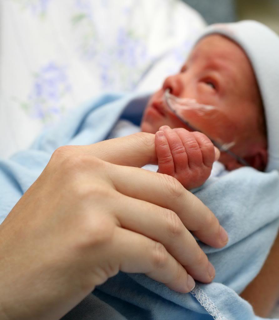 Mes del Nacimiento Prematuro