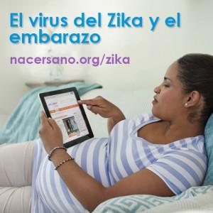 Tome en cuenta el virus del Zika antes de viajar